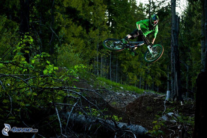 extreme biker, jump on bike, coniferous forest