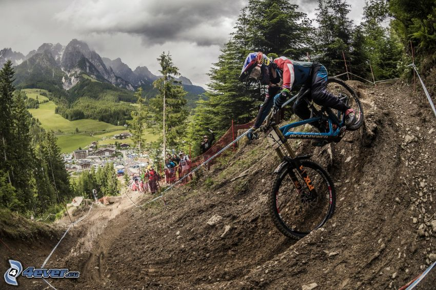 mountainbiking, motocross, mountains, coniferous forest