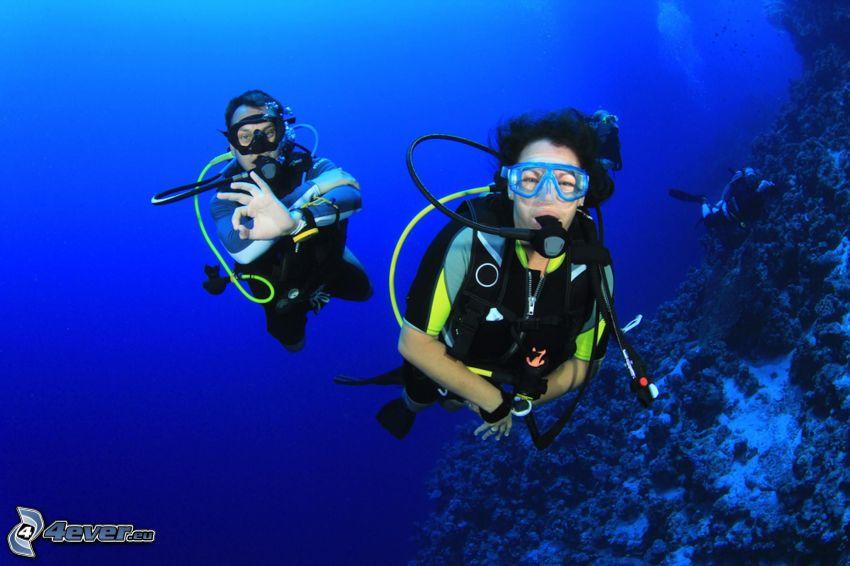 divers, corals