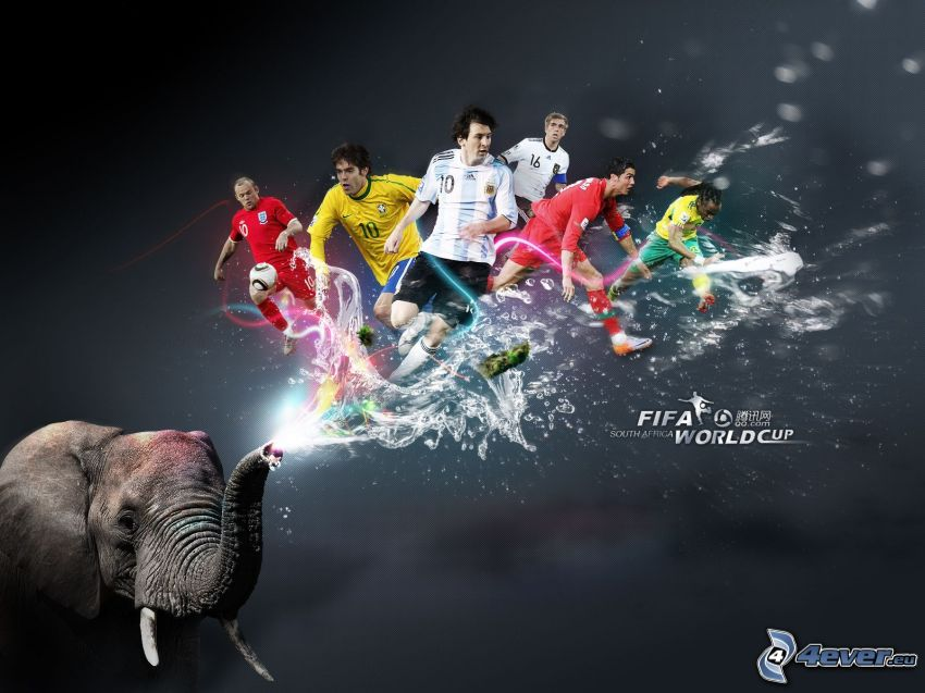 FIFA world cup, South Africa
