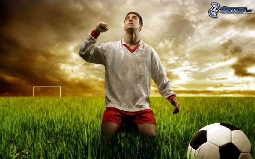 footballer, ball, football field, goal