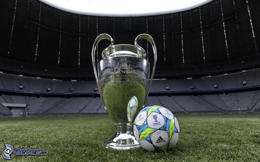 soccer ball, cup, football stadium, grass
