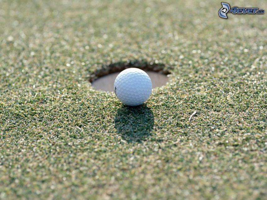 golf, grass, pit
