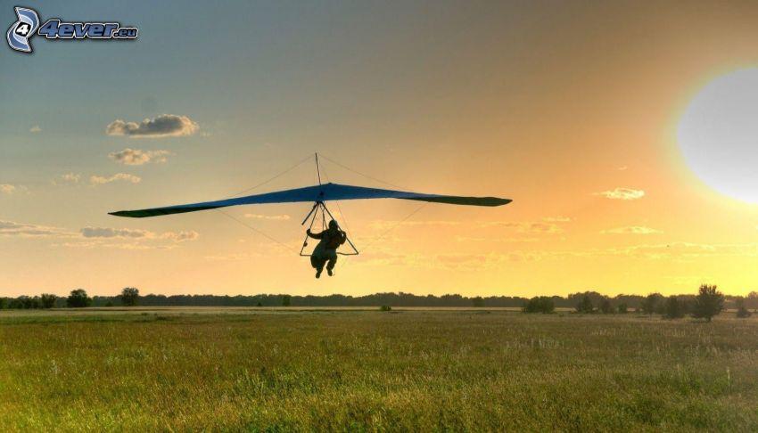 hang gliders, meadow, sun