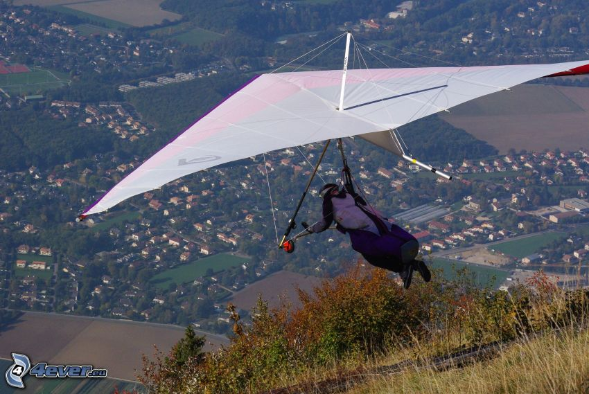 hang gliders, view of the city
