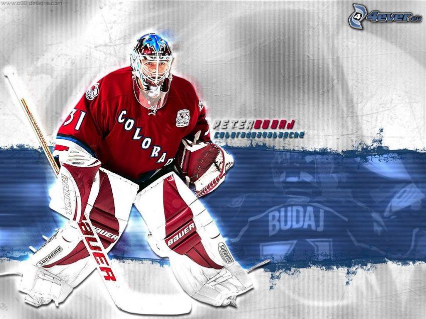 Peter Budaj, Colorado Avalanche, hockey
