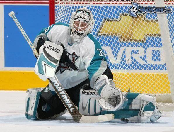 San José Sharks, goalie, NHL