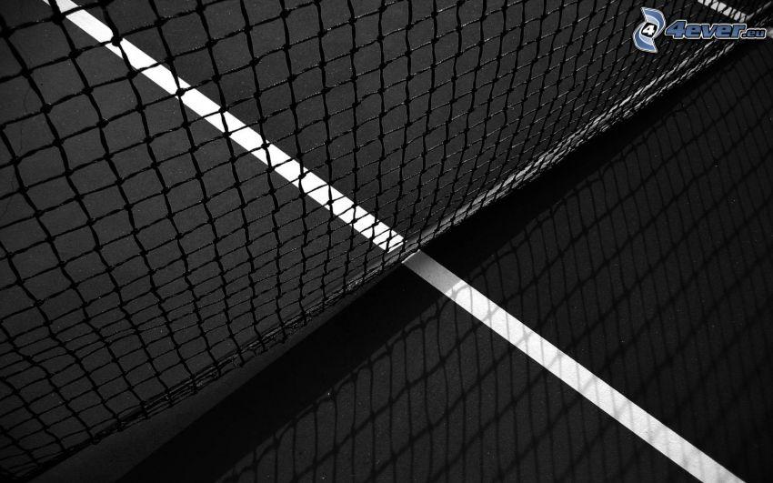 net, tennis, black and white photo