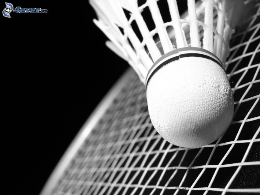 shuttlecock, badminton racket, black and white photo