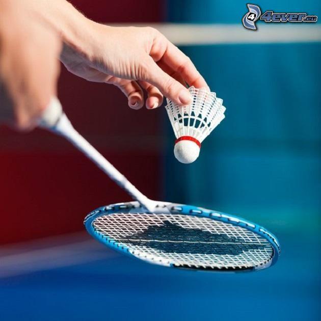 shuttlecock, badminton racket, hands