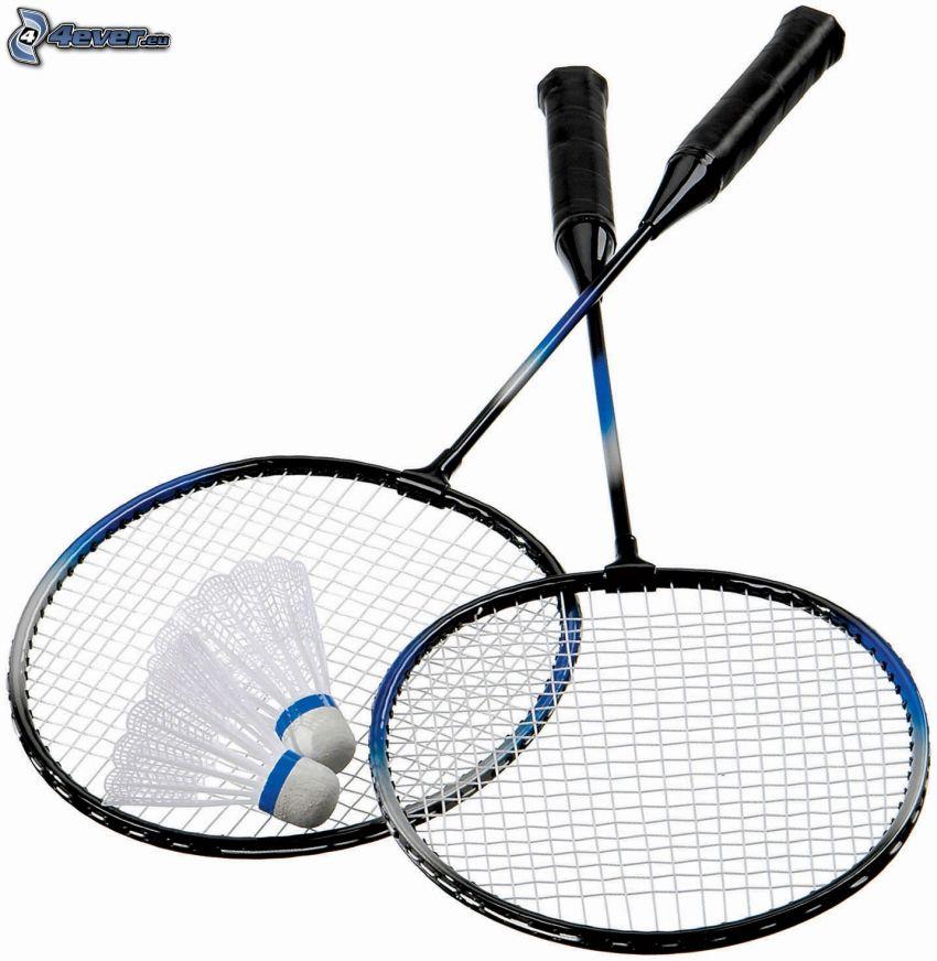 shuttlecock, badminton racket
