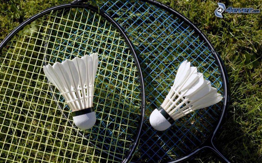 shuttlecocks, badminton racket
