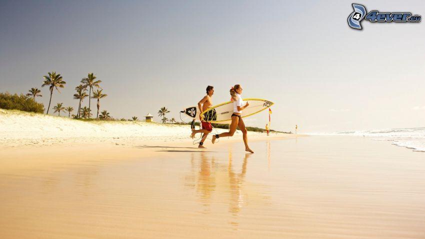 surfers on the beach, sandy beach, palm trees