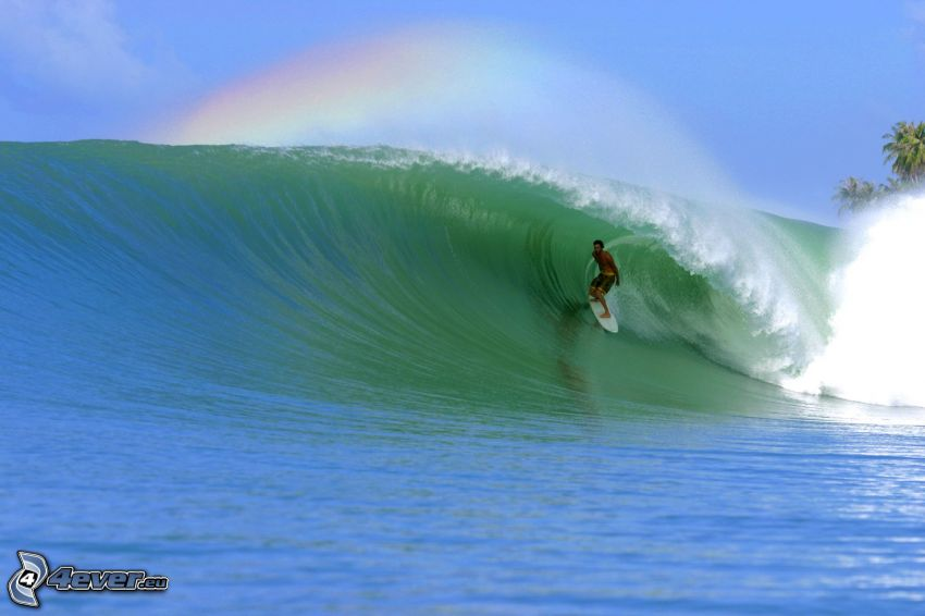 surfing, rainbow