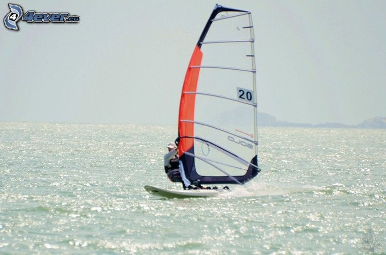 surfing, sea