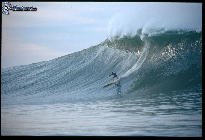 surfing, wave, sea