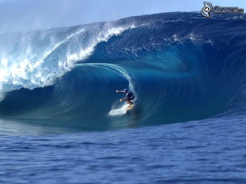 surfing, wave