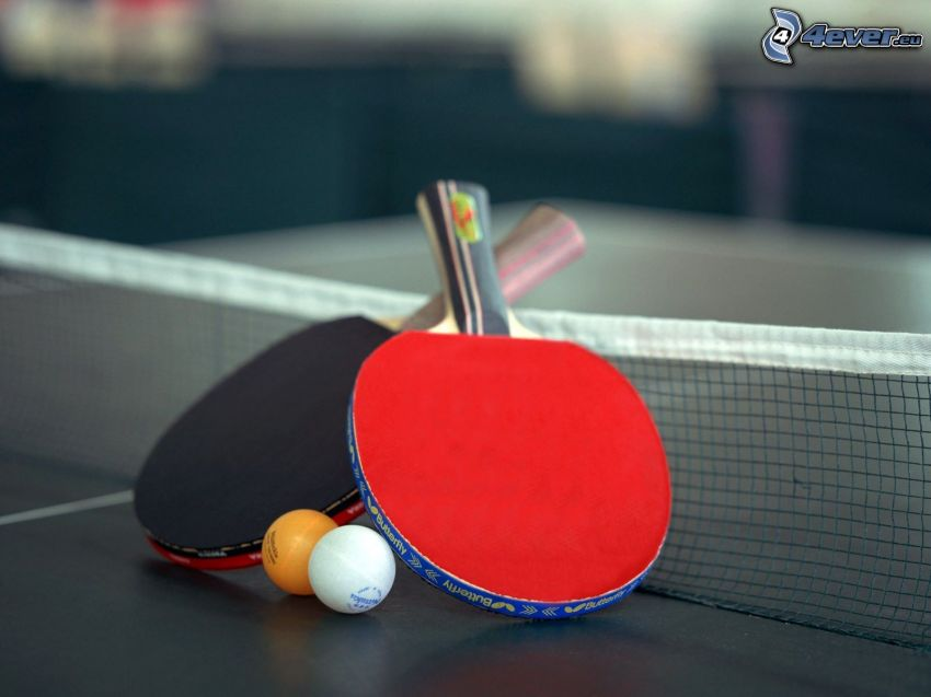 table tennis, racket