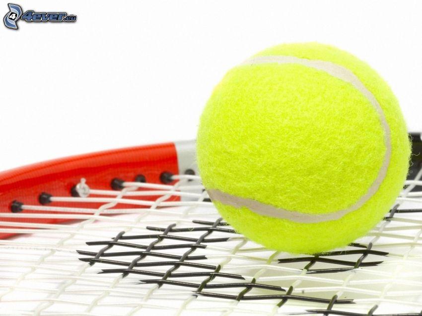 tennis ball, tennis racket