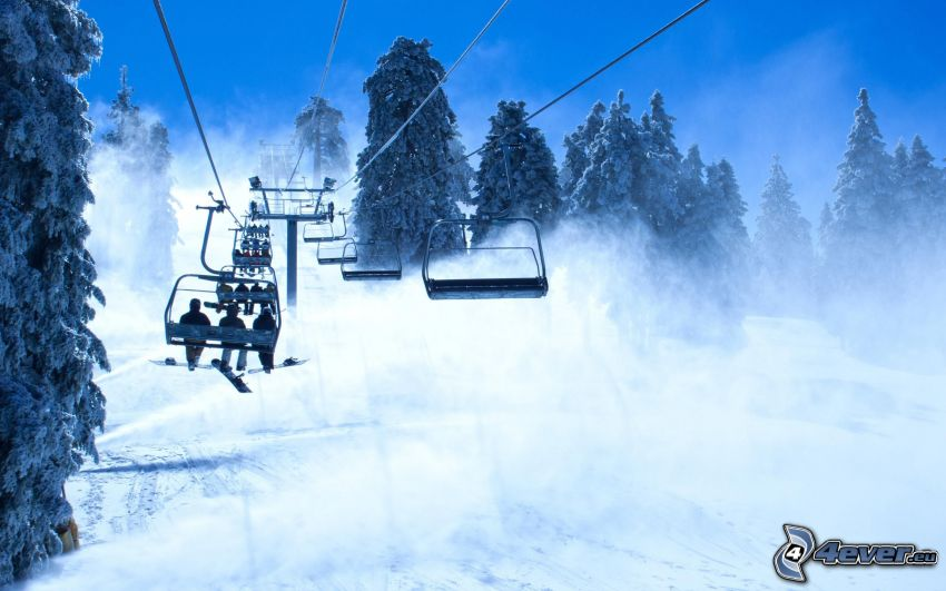 ski slope, cable-car, trees, snow