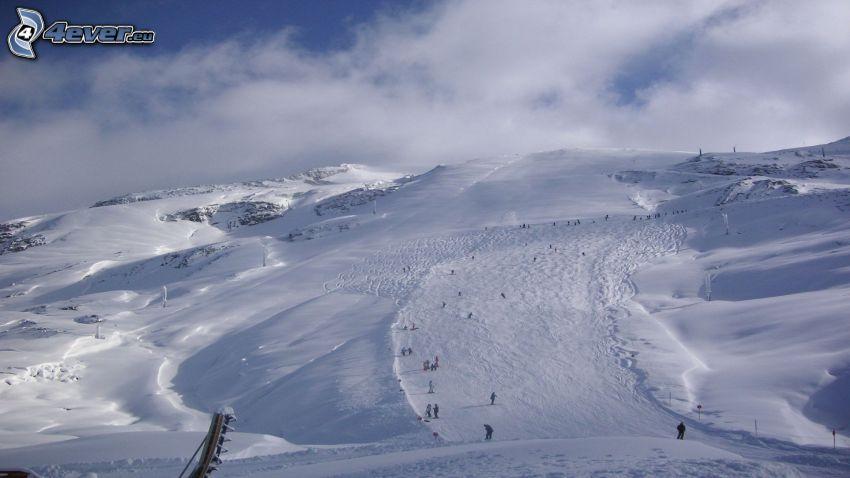 ski slope, skiers, snowy mountains