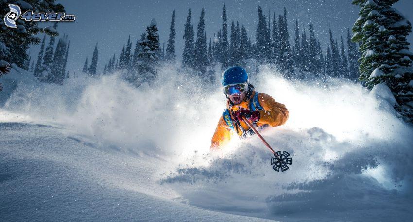 skiing, skier, snowfall