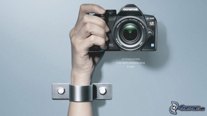 camera, Olympus, hand