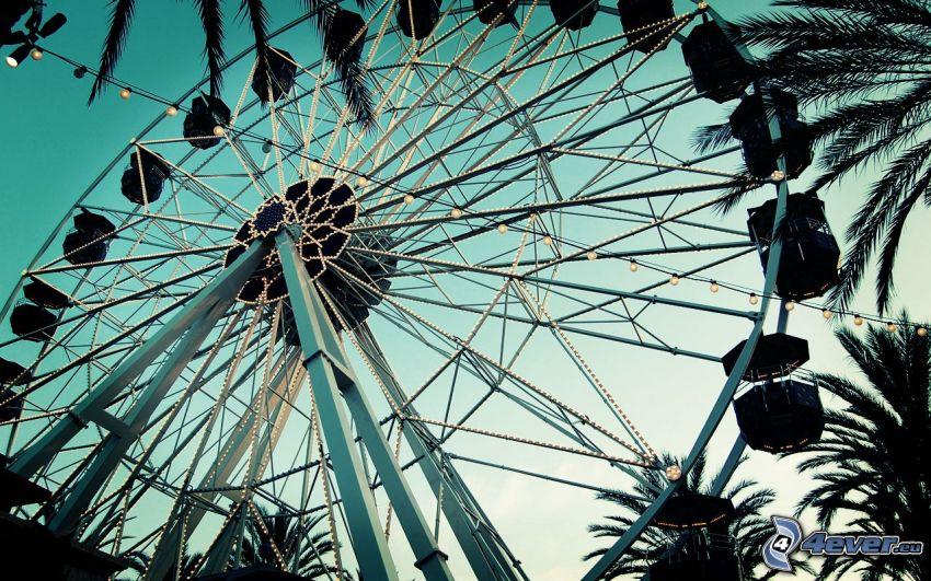 ferris wheel, carousel