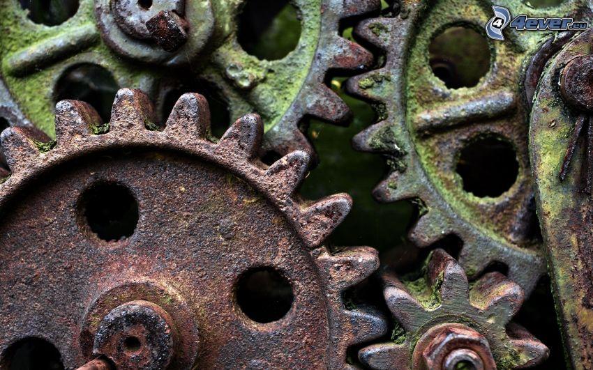 gears, rust