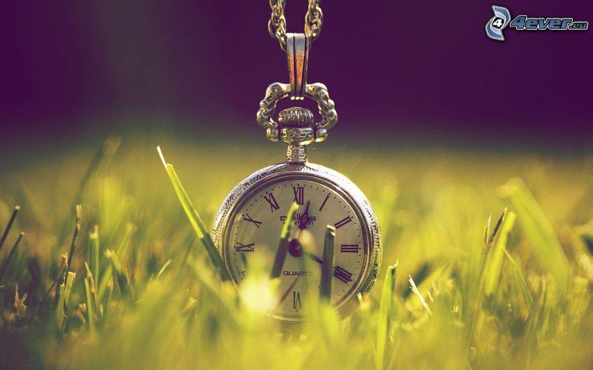 historic clocks, grass
