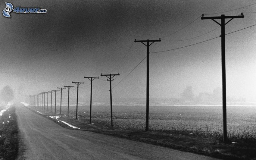 power lines, road, black and white photo