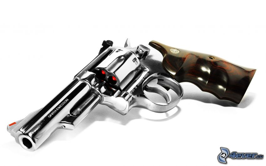 Smith & Wesson 500, pistol