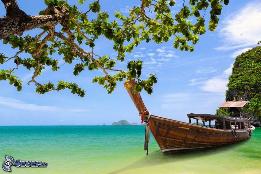 boat at sea, tree, sea