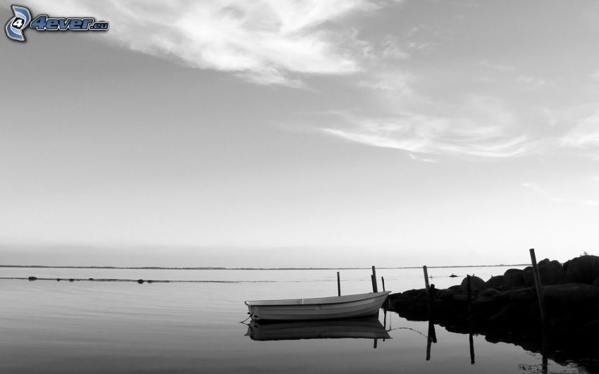 boat at shore, sea, pier, black and white photo