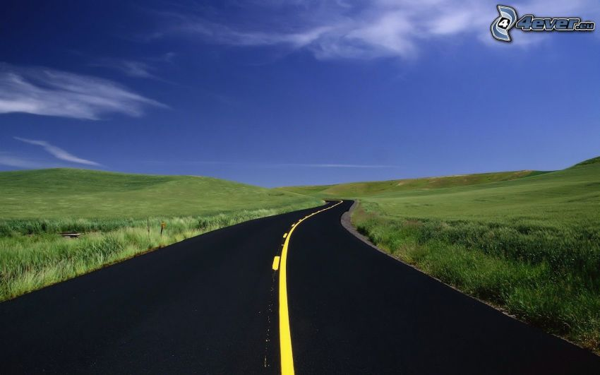 road, field