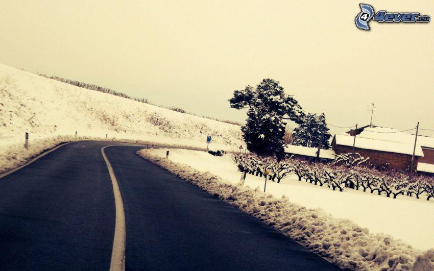 road, houses, snow
