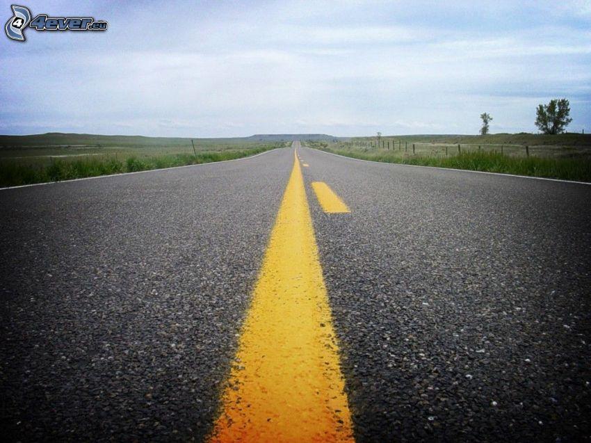 road, meadows