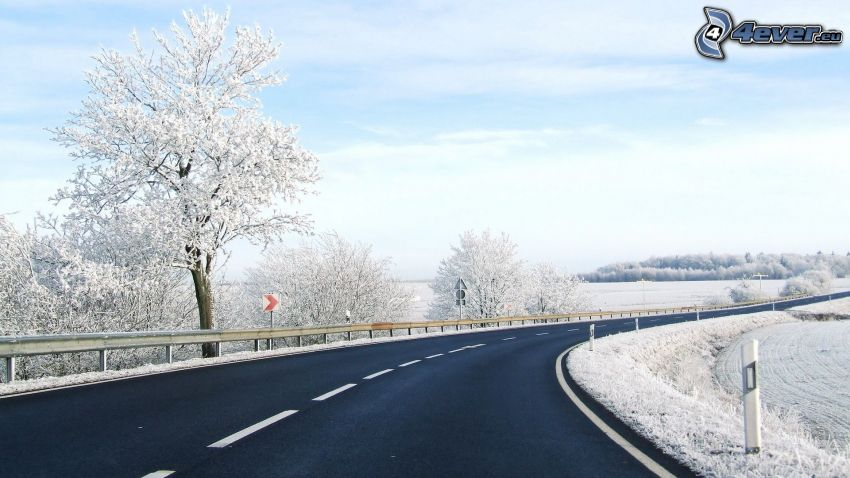 road, road curve, snowy landscape