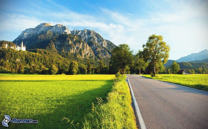 road, rocky mountains, meadow, Neuschwanstein castle