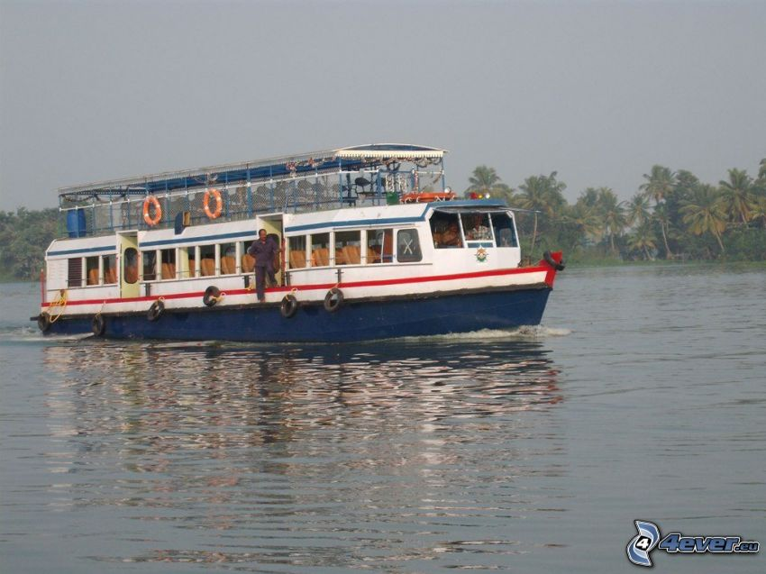 tourist boat, River, palm trees