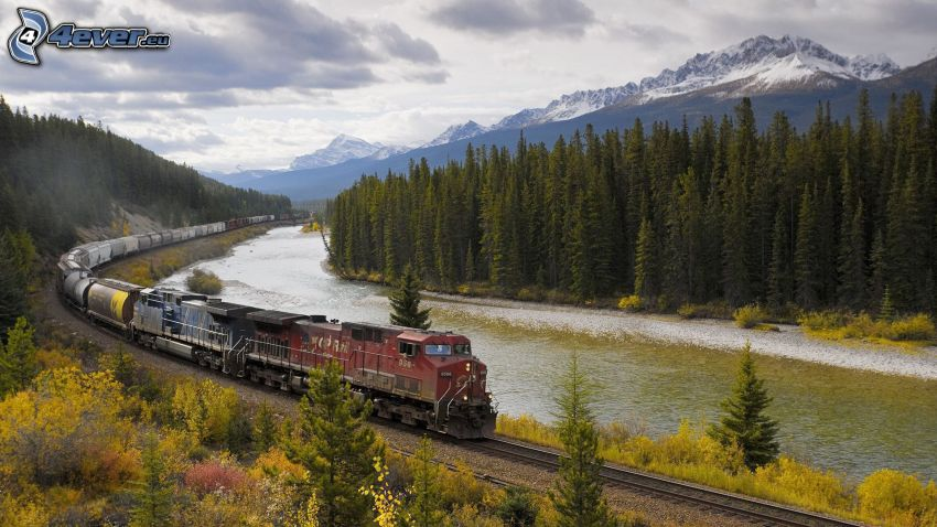 freight train, River, coniferous forest, snowy mountains