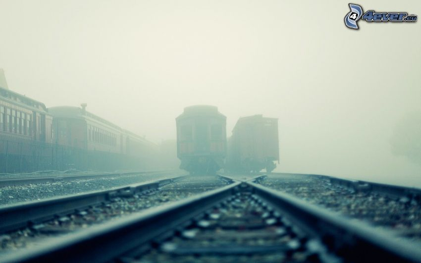 historic rail cars, rails, fog