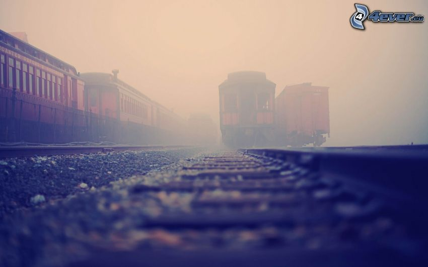 historic rail cars, railway station, fog