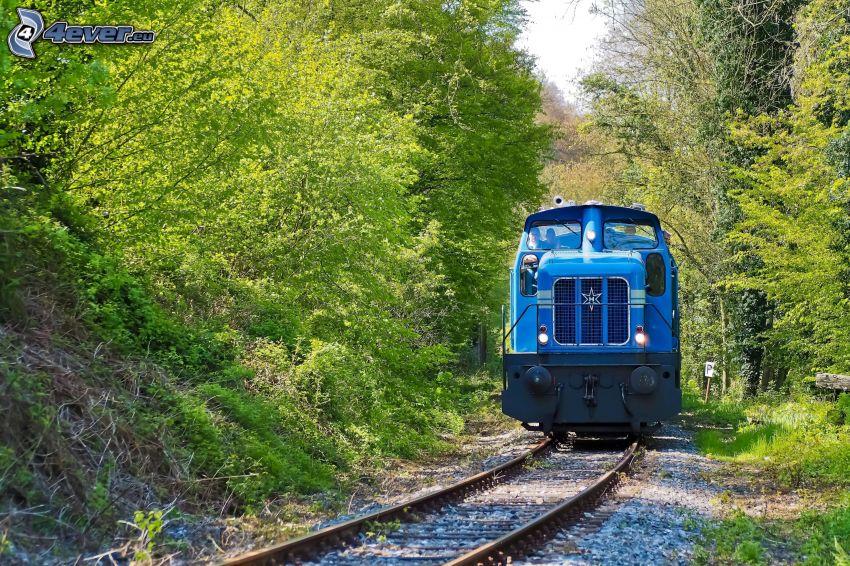 locomotive, green trees
