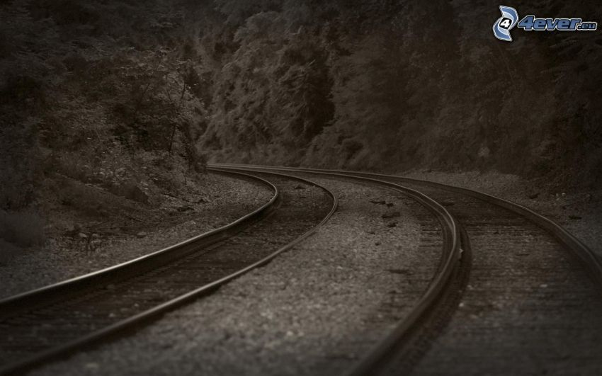 rails, road curve, black and white