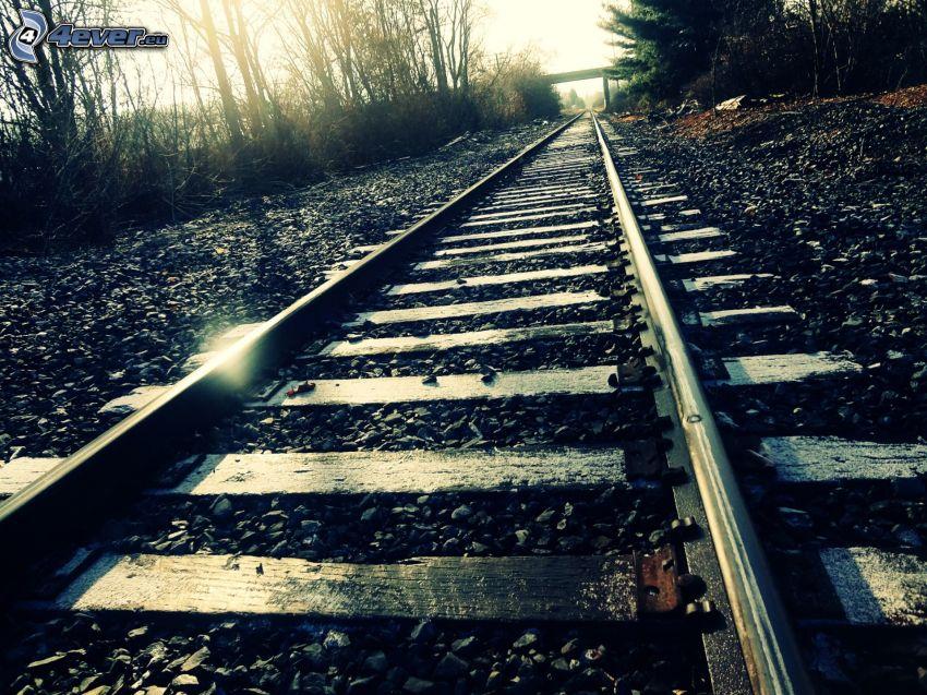 rails, sunbeams