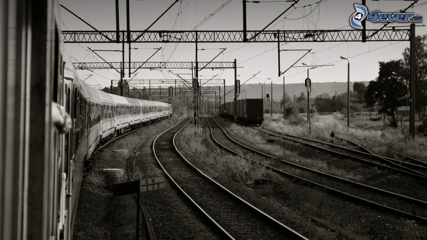 railway, rails, trains