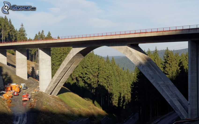 railway bridge, field path, coniferous forest