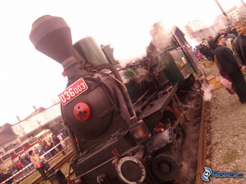 steam locomotive, exhibition