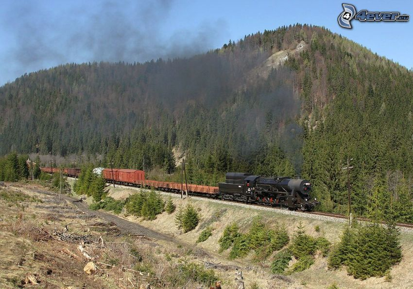 steam train, freight train, hill